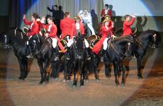 Menorca Somni Horse Show